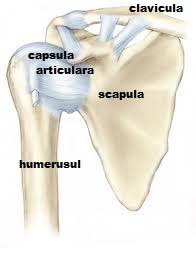 articulația umărului stâng doare medicament pentru dureri articulare severe