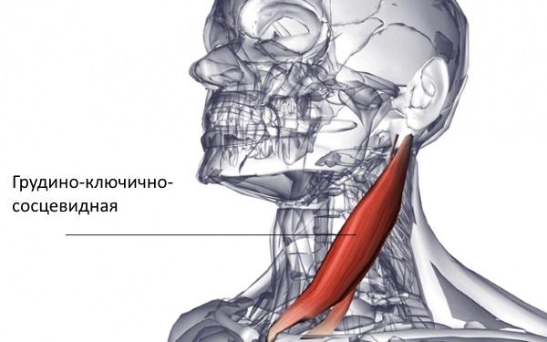 Deteriorarea articulației închise și deschise, Medicament vasodilatator pentru osteochondroză