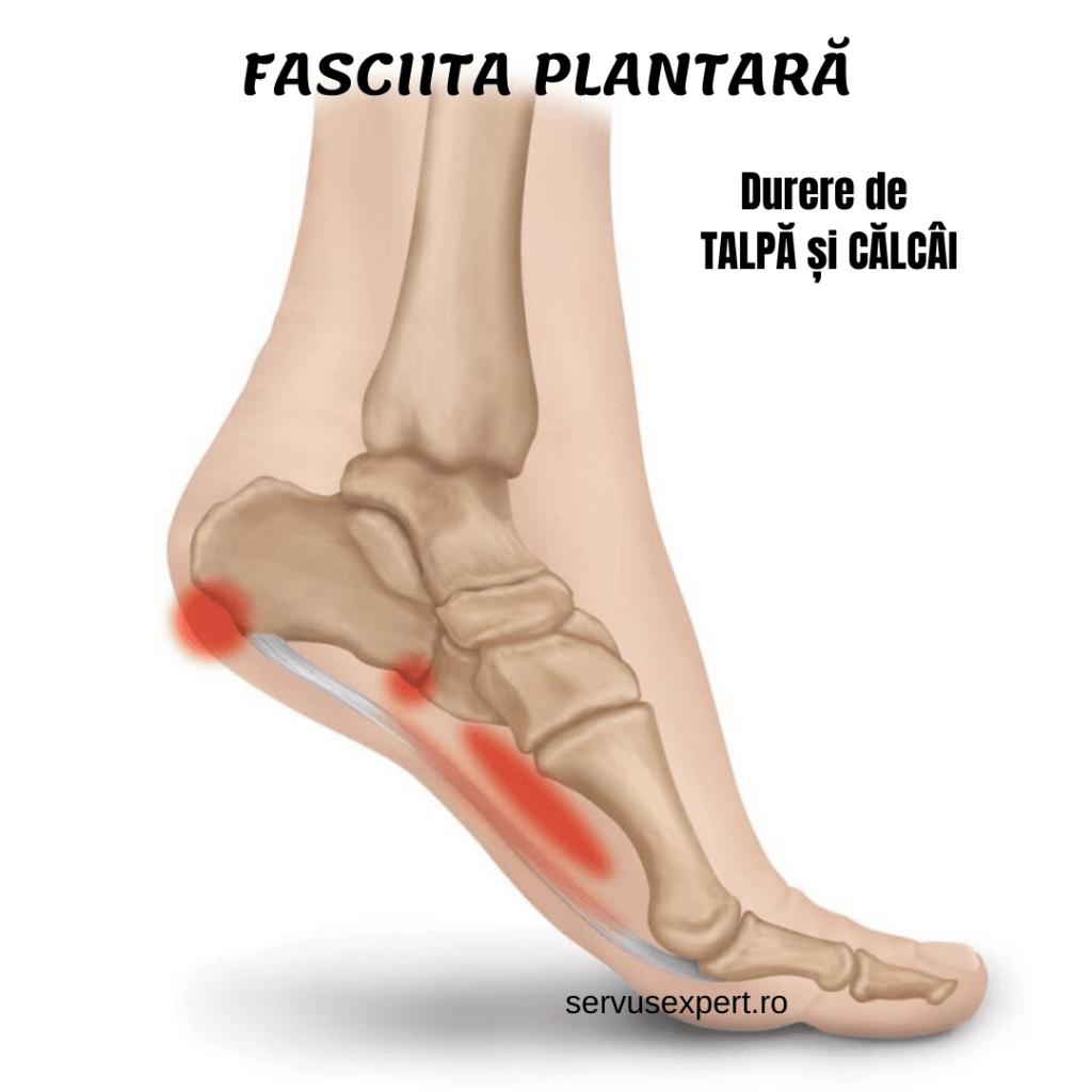 durere în zona articulației piciorului dureri articulare după renunț