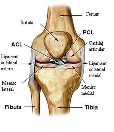 tratament cu artroza piciorului rozaliu