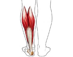 cauze ale durerii la genunchi după fractură