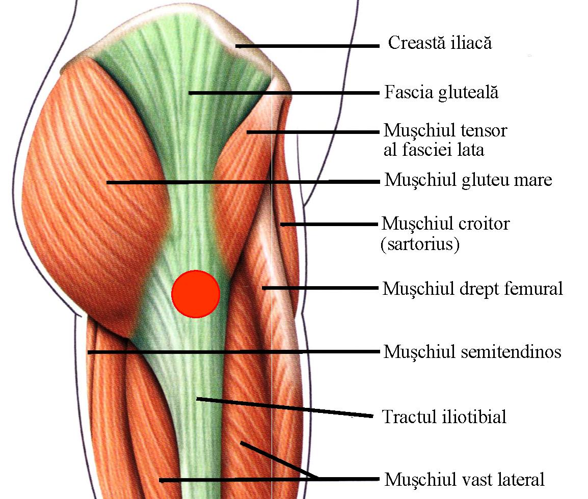 Șoldurile sunt foarte dureroase, Durerea de sold in timpul noptii: cauze, simptome si tratament