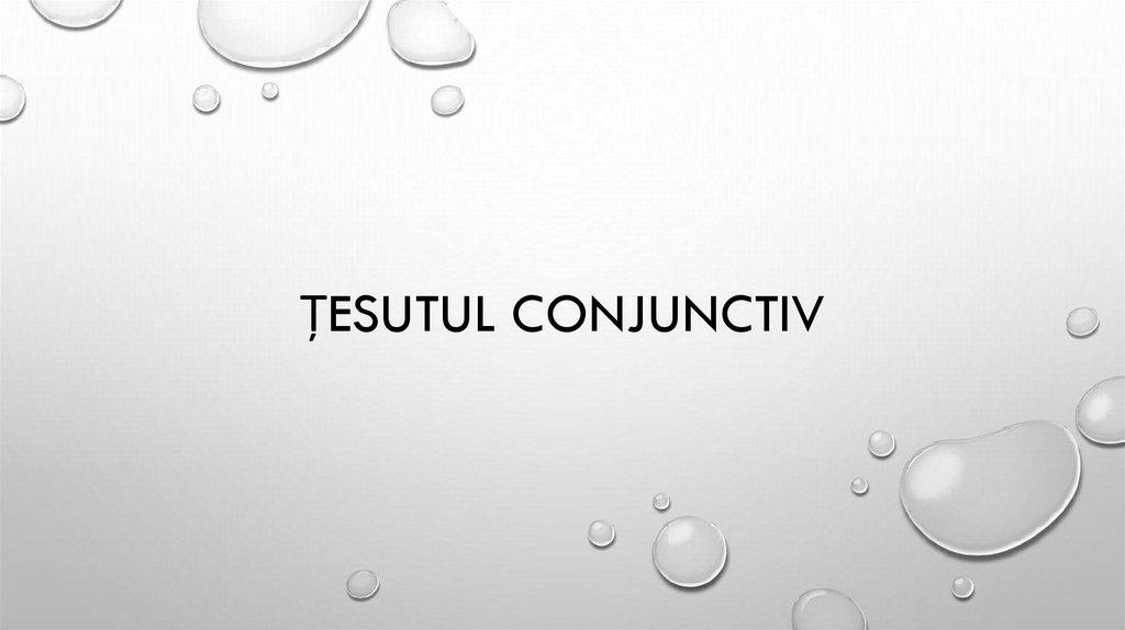 Țesutul conjunctiv este cartilajul fluid - ipa-law.ro