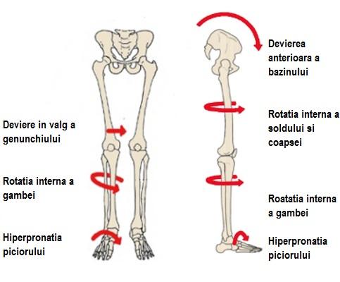 Deteriorarea membrelor și a articulațiilor, Vitamine pentru artroza articulației umărului