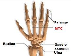 durere în articulația degetului arătător