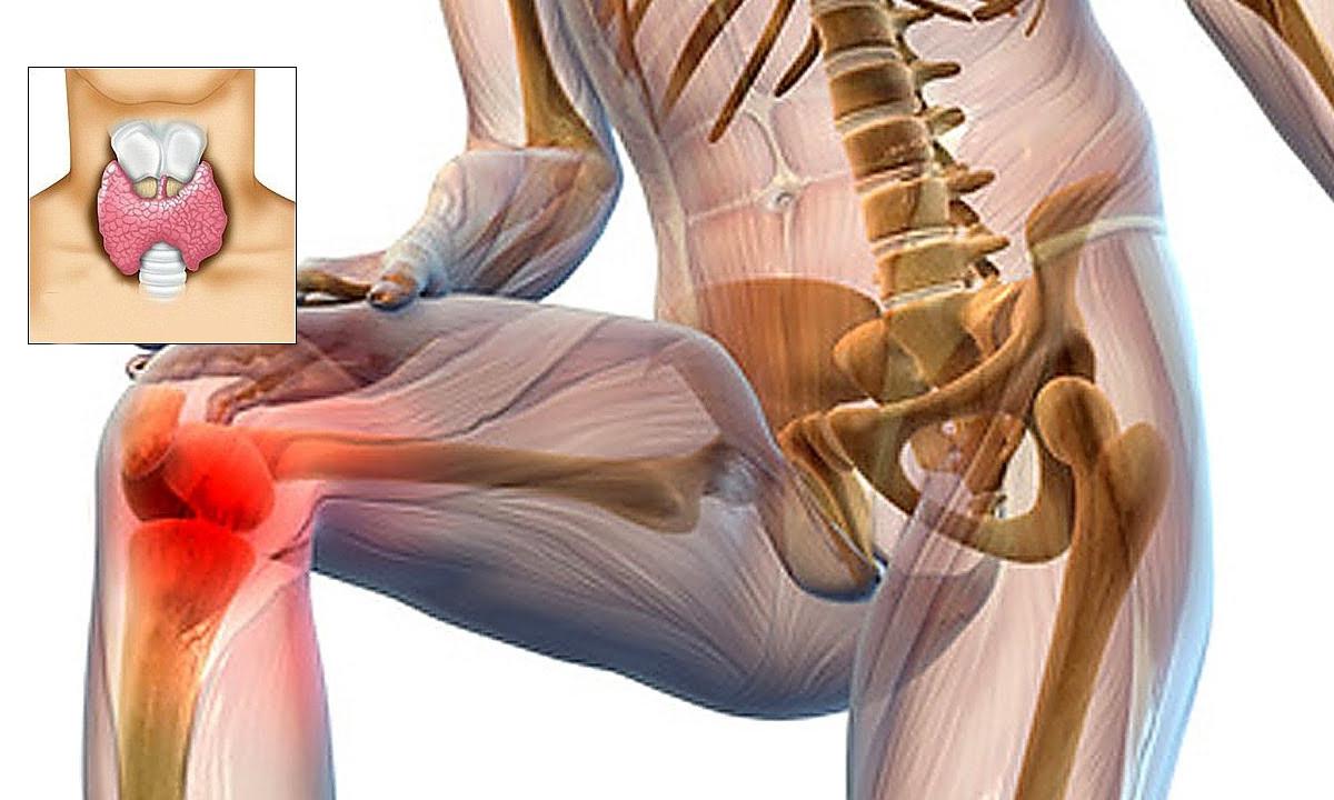 dureri articulare ce pot fi bolile