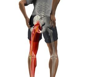 dureri articulare din exteriorul coapsei