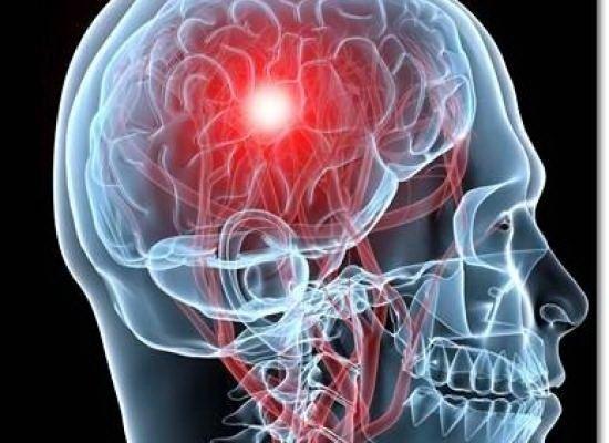 artrocalm plus don pentru recenzii de tratament comun