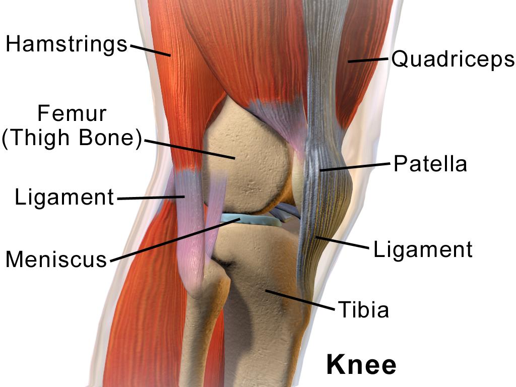 genunchiul iese din articulație ce trebuie făcut