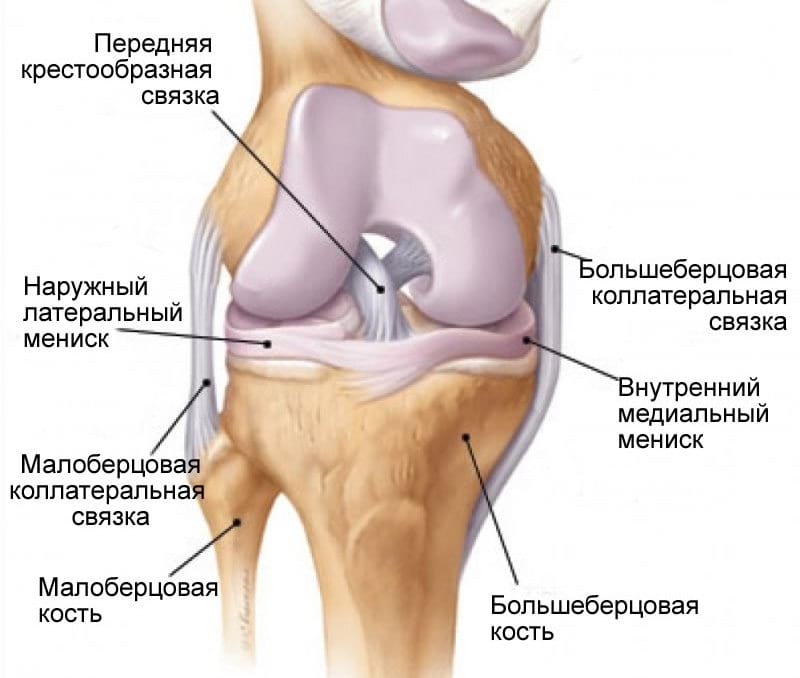 Разрыв передней связки лечения коленного сустава - ipa-law.ro