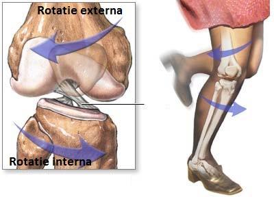 recuperare după ruperea ligamentelor laterale ale articulației genunchiului