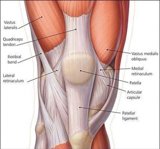 Sindromul de stres tibial (durerea tibială, shin splints)