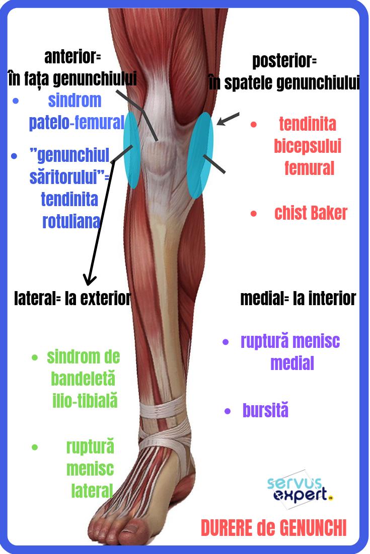 dureri frontale la genunchi