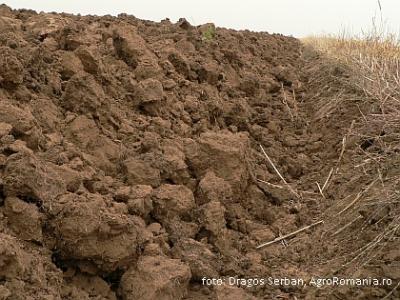 Tratament articular cu gunoi de grajd