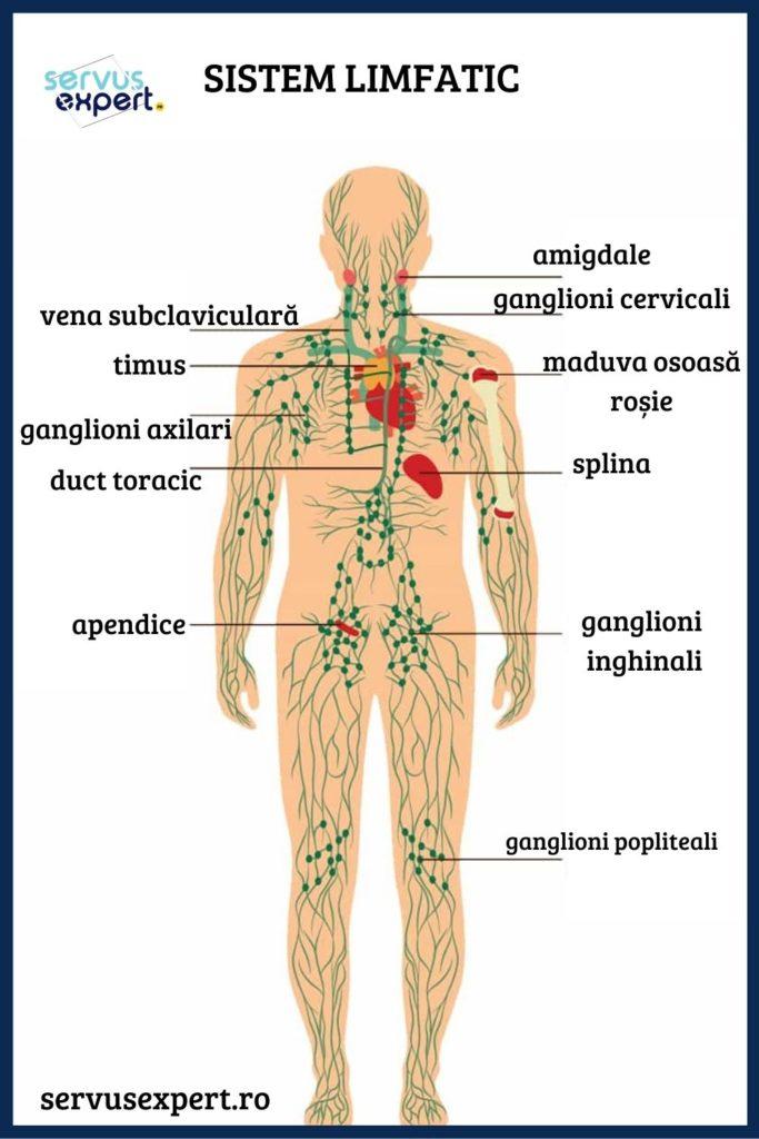 dureri articulare și ganglioni limfatici măriți