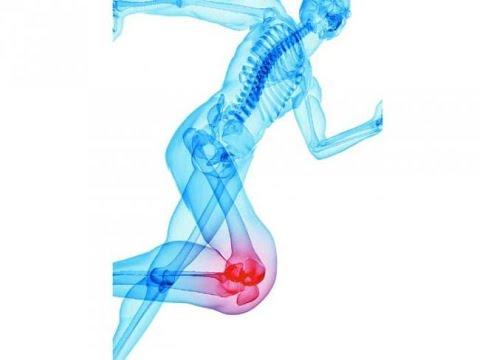 unguent teraflex pentru articulații Preț cum să elimini rapid durerea în articulația genunchiului
